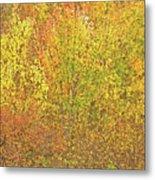 3991 Autumn Profusion Metal Print
