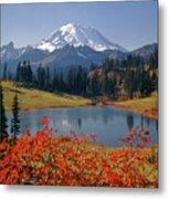 3m4824 Tipsoo Lake And Mt. Rainier H Metal Print