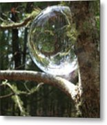 4-22-16--8699 Don't Drop The Crystal Ball, Crystal Ball Photography  Metal Print