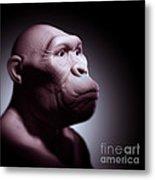 Australopithecus Metal Print