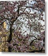 Central Park Spring Metal Print