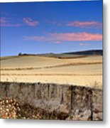 Cereal Fields Metal Print