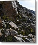 Colorful Lichens Growing On Rocks Along Monument Ridge, In The Eastern Sierra Nevadas Metal Print