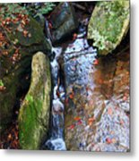 4 Faces In The Water Metal Print