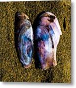 Fallen Butterfly Metal Print