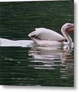 Fishing Pelican Metal Print