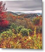 Graveyard Fields Overlook In The Smoky Mountains In North Caroli Metal Print