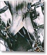 4 Grays Metal Print