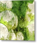 Green Grapes Close Up In Napa Valley Ready To Be Made Into Wine Metal Print