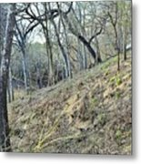Hill Country Metal Print
