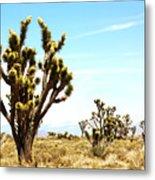 Joshua Tree Desert Metal Print