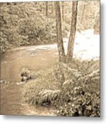 Mud Run Pocono Mountain Stream Pennsylvania Metal Print