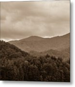 Nature Landscapes Around Lake Santeetlah North Carolina Metal Print