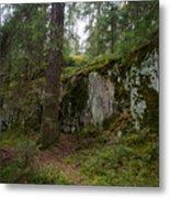 Old Forest In Kauppi Tampere Metal Print