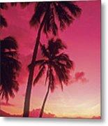 Palms Against Pink Sunset Metal Print
