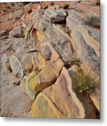 Rainbow Of Color In Valley Of Fire Metal Print