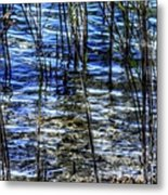 Sawgrass Revisited Metal Print