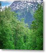 Scenic Train From Skagway To White Pass Alaska Metal Print