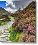 Snowdonia National Park - Metal Print