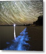 Star Trails And Bioluminescence Metal Print by Philip Hart