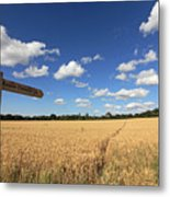 Tracks Through Golden Wheat Field Metal Print