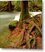 Whatcom Creek Metal Print