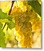 Yellow Grapes Metal Print