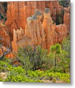 Fairyland Canyon Metal Print