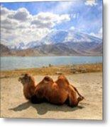 Xinjiang Province China Metal Print