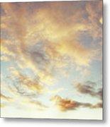 Summer Sky 1 Metal Print