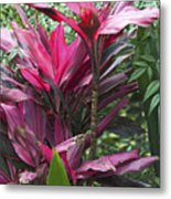 4339- Flower Metal Print