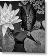 4475- Lily Pads Black And White Metal Print
