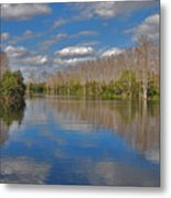 47- Everglades Serenity Metal Print