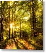 Landscape Definition Nature Metal Print