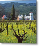 4b6394 Mustard In The Vineyards Metal Print