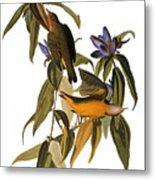 Audubon: Warbler, (1827-38) Metal Print by Granger
