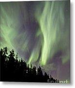 Aurora Borealis Over Trees, Yukon Metal Print