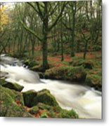 Autumn At Golitha Falls Metal Print