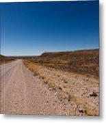 Namibia Road Metal Print