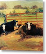 5 O Clock Cows Metal Print