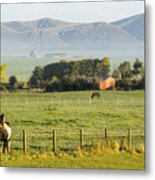 Scottish Scenery Metal Print
