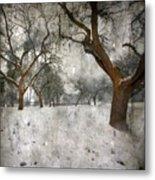 The Winter Time Metal Print