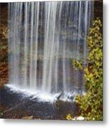 Waterfall Metal Print by Elena Elisseeva