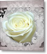Wedding Rose Collection  Metal Print