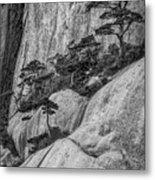 5867- Yellow Mountains Black And White Metal Print