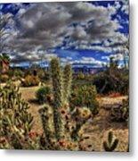 Anza-borrego Desert State Park Metal Print