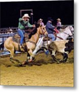 Steer Roping Metal Print