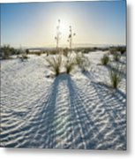 The Unique And Beautiful White Sands National Monument In New Mexico. Metal Print