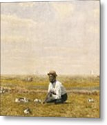 Whistling For Plover Metal Print