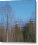 6002-reflections Metal Print